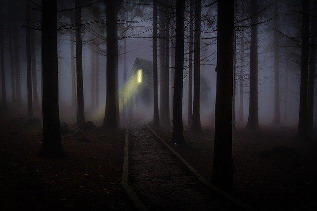 Dom uprostred tmavého lesa, z ktorého vyžaruje svetlo